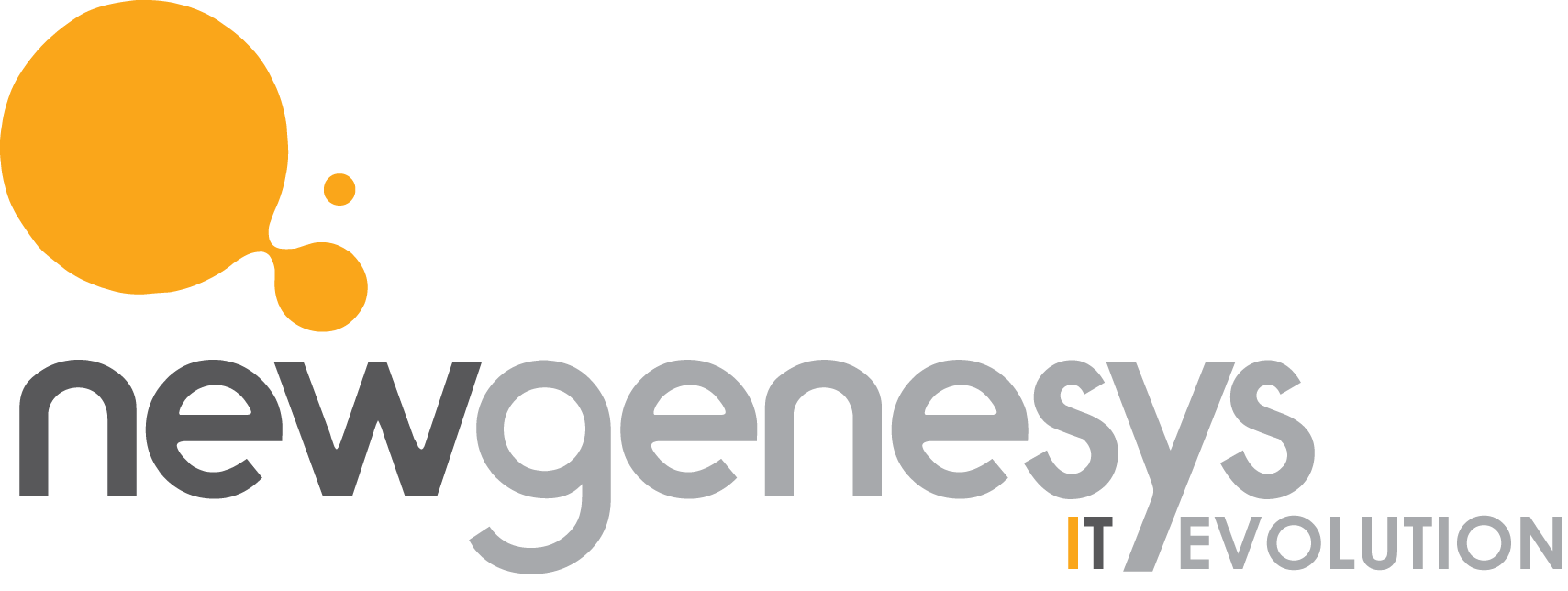 New Genesys S.r.l.
